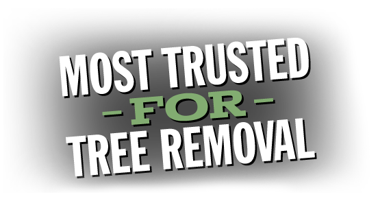 Most Trusted in Tree Services