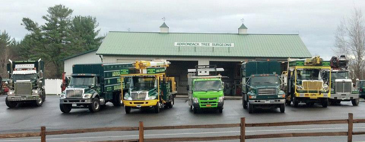 Adirondack Residential, Commercial, and Emergency Tree Service